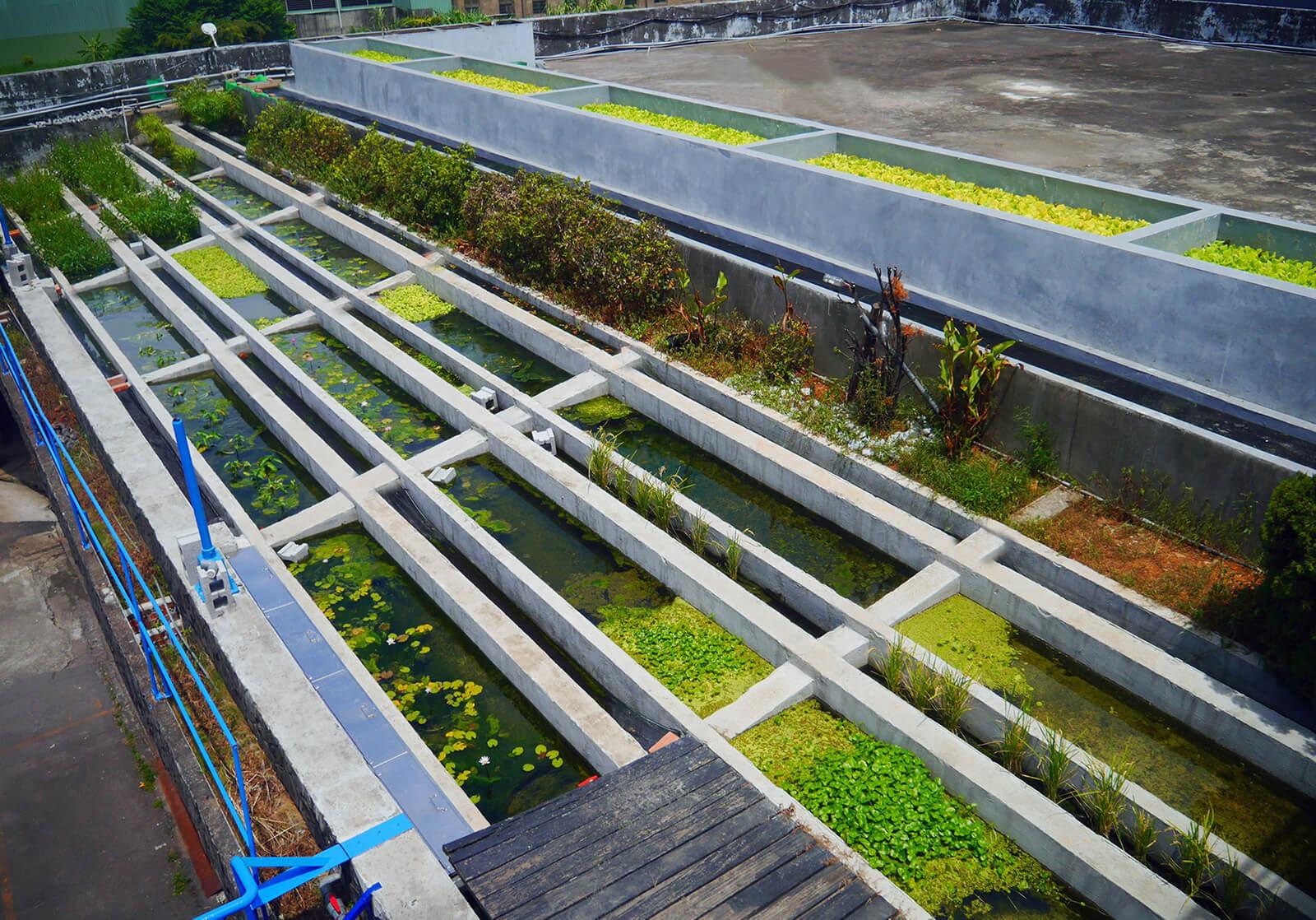保技鋁業打造生態淨化池,致力於建構安全、健康的工作環境